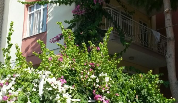 Didim 1 Bedroom Apartment For 5 people